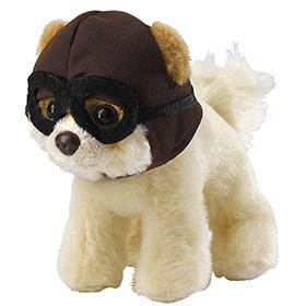 perrito piloto